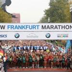 Quality Field for Frankfurt Marathon