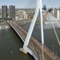 Rotterdam Marathon Report 2002