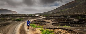 Lanzarote Wine Run