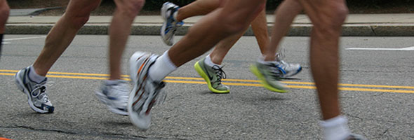 Components of endurance training