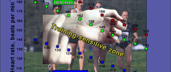 Training Sensitive Zone